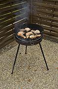 barbecue gaz et charbon bois