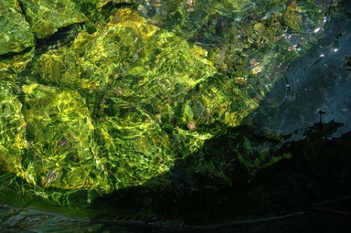 rio textura