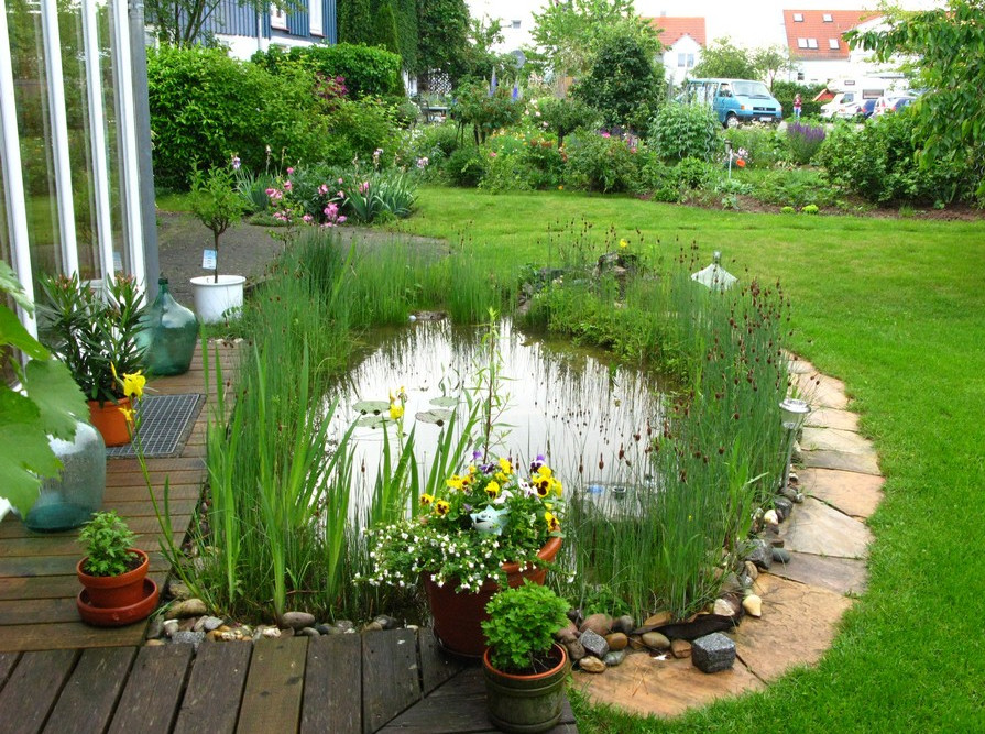 Small Fish Pond Design