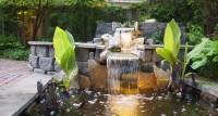 Modern Pond Waterfall Design | Pool Design Ideas