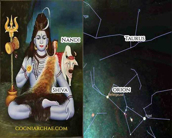 orion-shiva-taurus-nandi-vedic-yoga