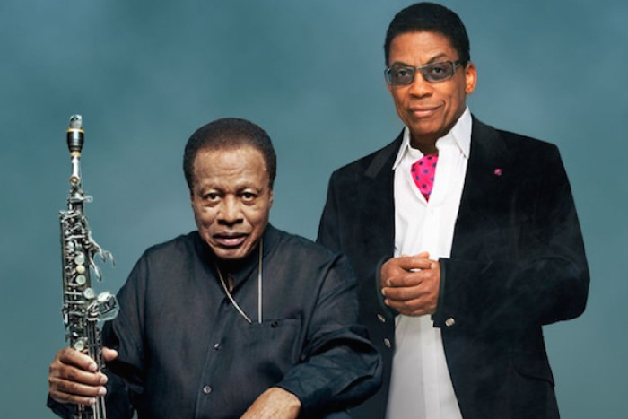 herbie hancock and wayne shorter