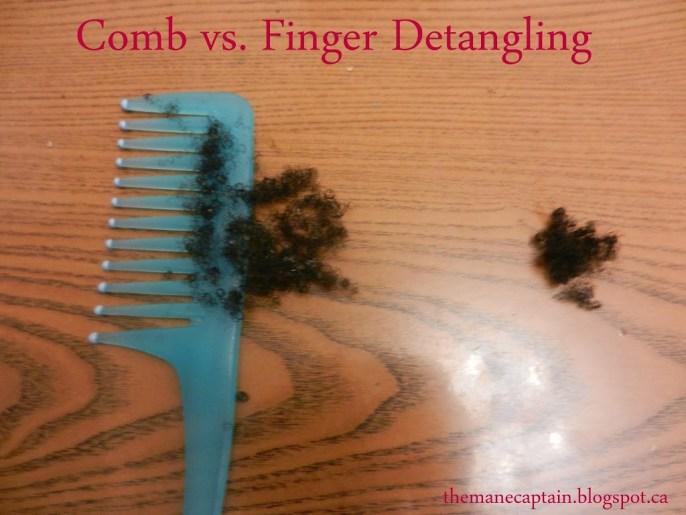 Hair Breakage | Regular Combing vs. Finger Detangling