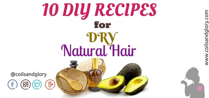 Ten DIY Recipes for Soft Natural Hair