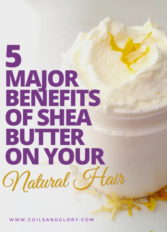 Five Benefits of Shea Butter on Natural Hair