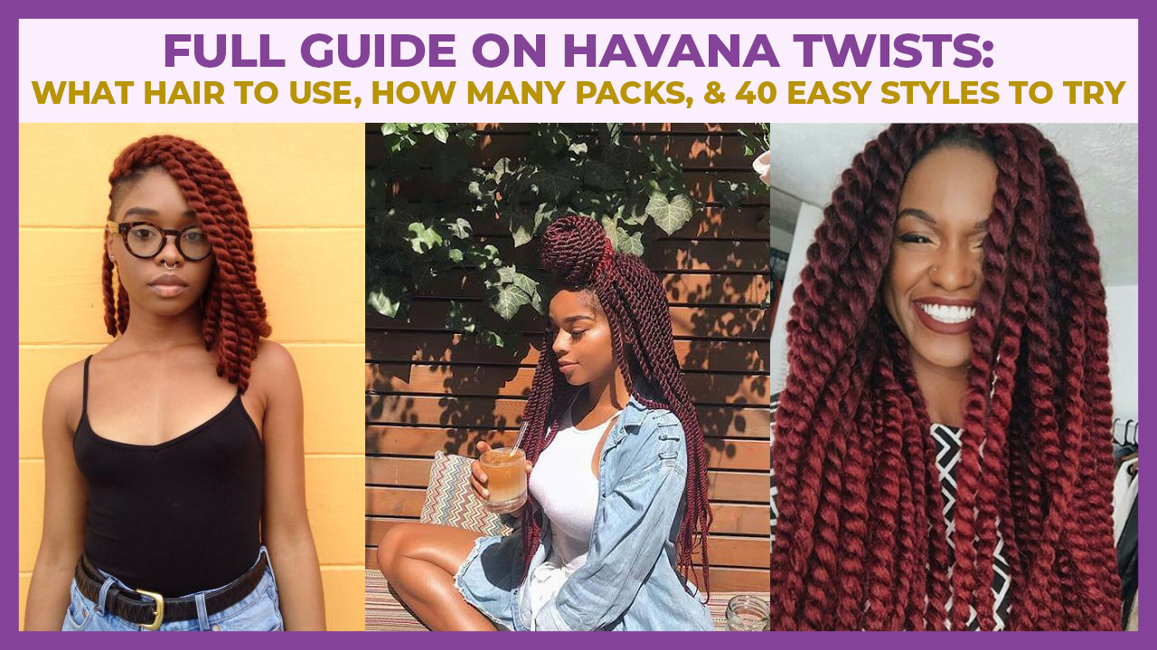 short havana twist hairstyle idea on 4c hair