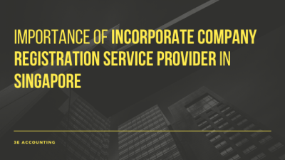 Importance of Incorporate Company Registration Service Provider In Singapore