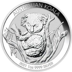 Australian Platinum Koala