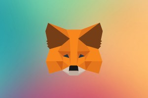 Google temporarily removes popular Metamask from the Chrome Extension Store