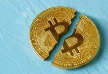 Duayen Analist- 2020 Bitcoin Yarılanması Öncekilerden Farklı