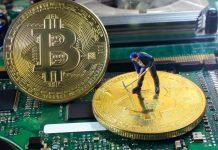 bitcoin madenciliği halving
