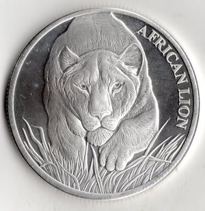 republic_of_chad_african_lion_front