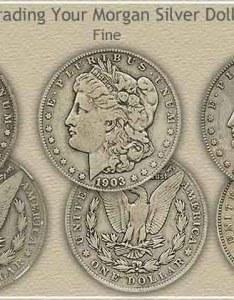 also rising morgan silver dollar values rh coinstudy