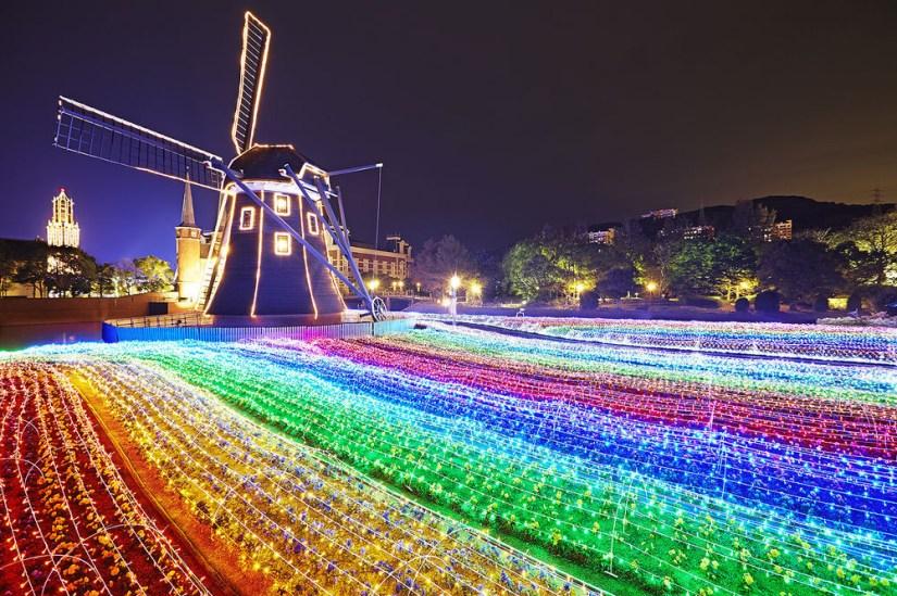Rainbow Flower Garden