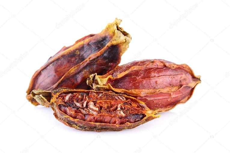 Fruta de gardênia seca