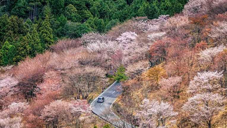 Rodovia no Japão