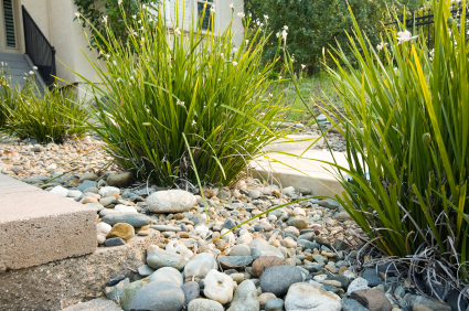 6 Low Maintenance Landscaping Tips Smart Landscaping Ideas COIT