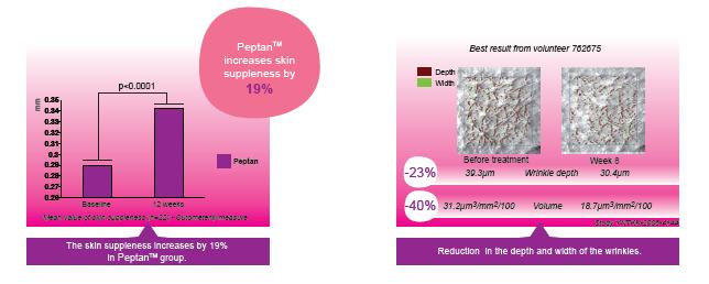 Efecto Anti Arrugas de Peptan