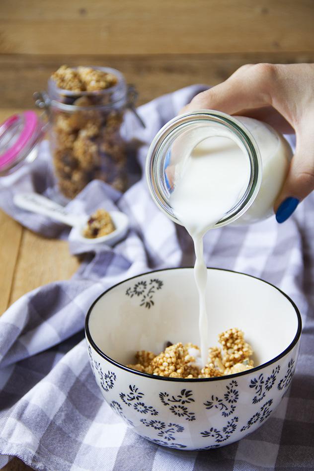granola-con-cranberries-e-cocco_03