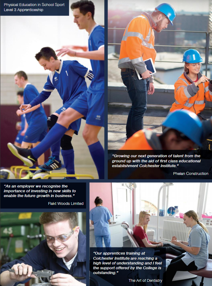Apprenticeship Case Studies