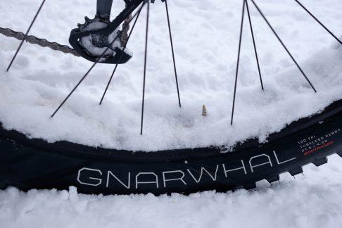 Medium Pressure in Gnarwal tires on snow.