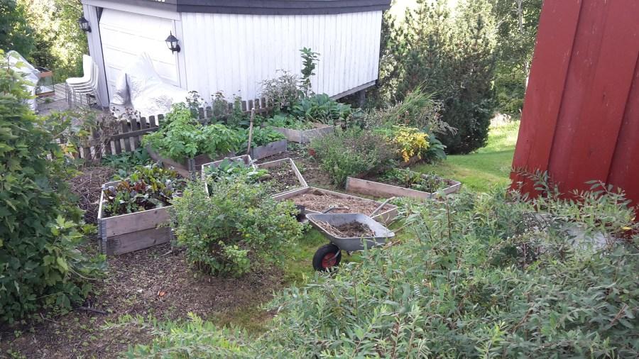 Oversikt over hagen