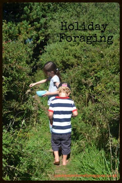 holiday foraging