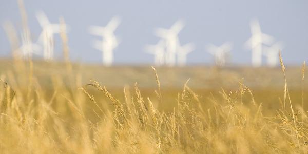 Energia eolica por Damien McMahon