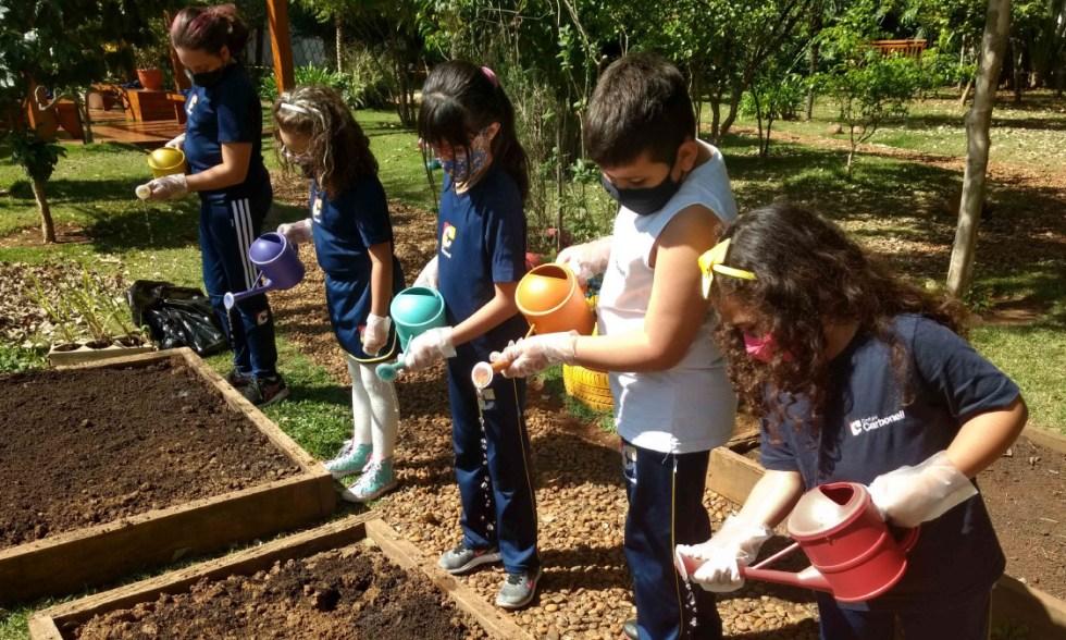 Horticultura! Crianças do Período Integral plantam mudas de capim-cidreira e hortelã no Bosque Sensorial!