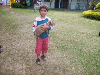 expo-mascotas-2008-12