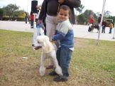 expo-mascotas-2008-24