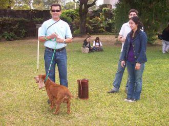 expo-mascotas-2008-34