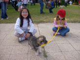 expo-mascotas-2008-38