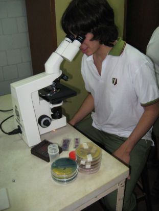 microbiologia-6
