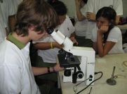 microbiologia-8