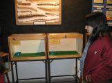 museos-de-ciencias-naturales-3ros-19