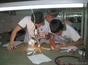 trabajo-de-laboratorio-4to-5