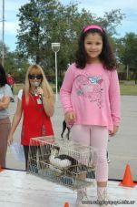 expo-mascotas-2009-110