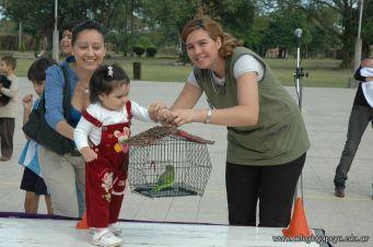 expo-mascotas-2009-111