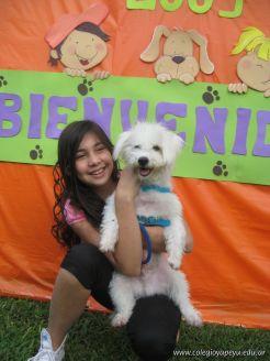 expo-mascotas-2009-12