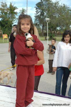expo-mascotas-2009-126
