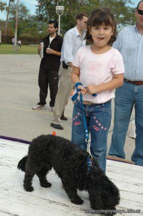 expo-mascotas-2009-138