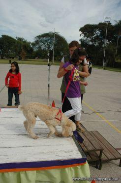 expo-mascotas-2009-144
