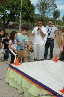 expo-mascotas-2009-157