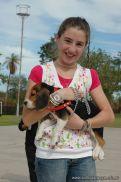 expo-mascotas-2009-160