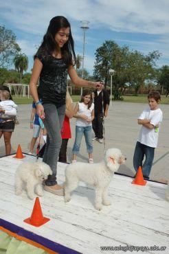 expo-mascotas-2009-174