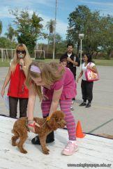 expo-mascotas-2009-179