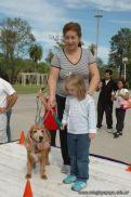 expo-mascotas-2009-185