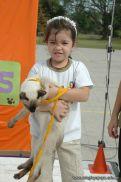 expo-mascotas-2009-219