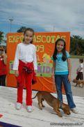 expo-mascotas-2009-220